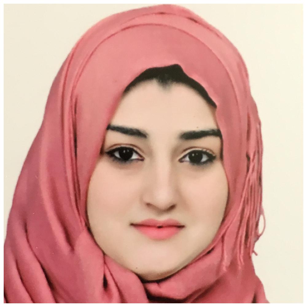 Ms. Dina Abdul Kareem